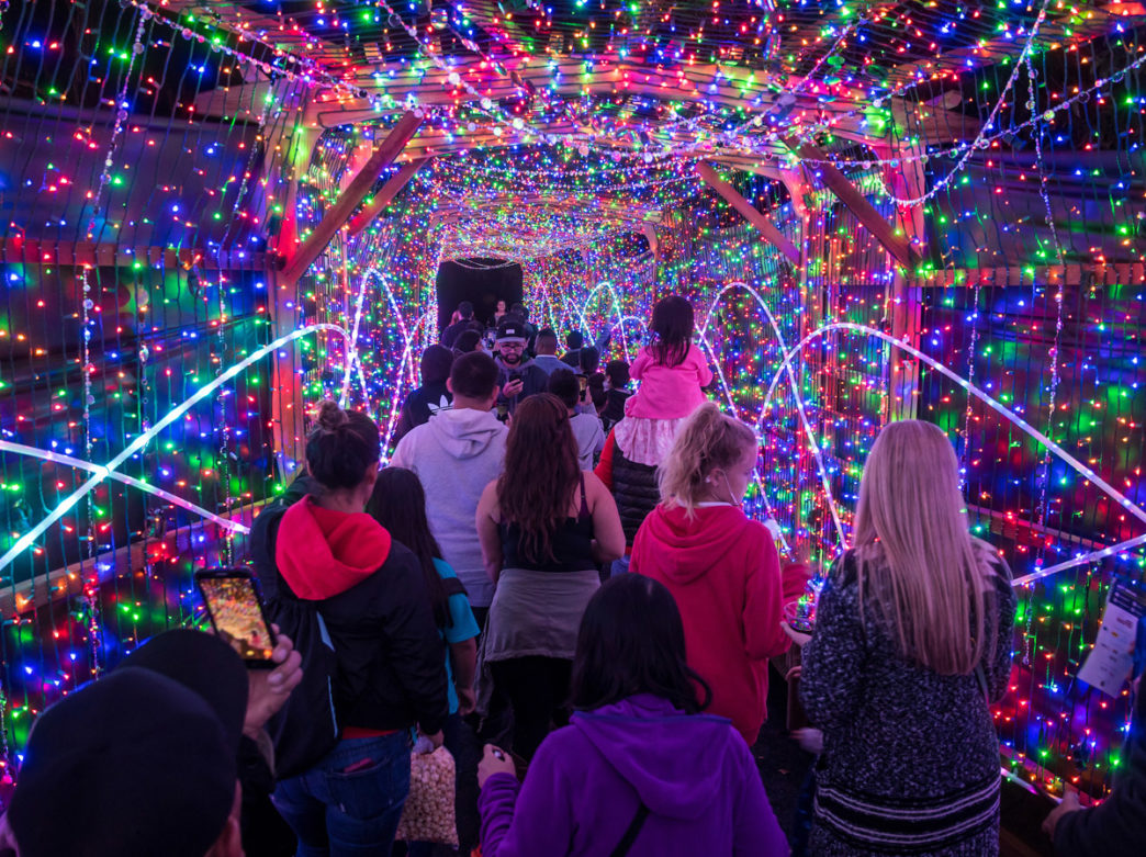 The Great Christmas Light Fight 2019.The Top Places To View Holiday Lights In Philadelphia For