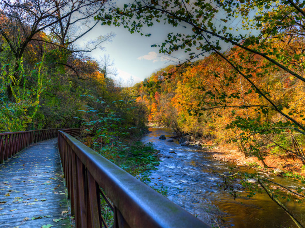 Wissahickon Gorge in the Fall